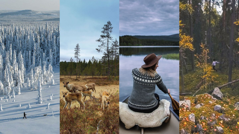 Lapland, SCAPES Bucket List