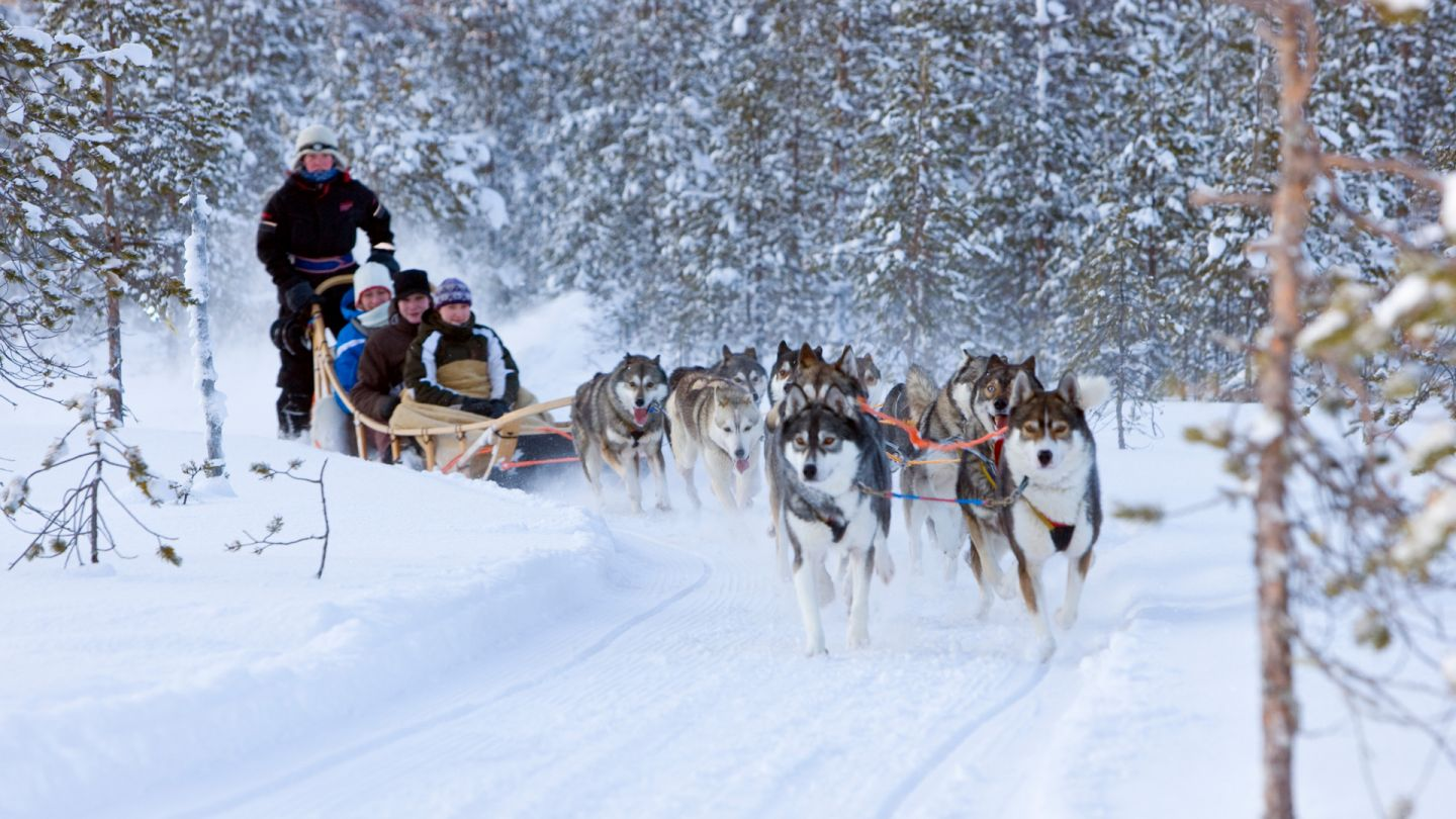 Husky ride, Kardashian Lapland Holiday