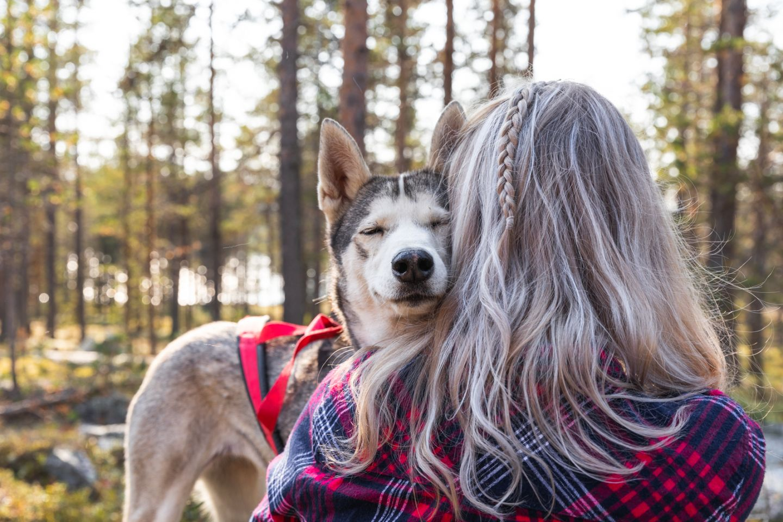 Husky walk Muonio, Carly Rae Jepsen Lapland Bucket List