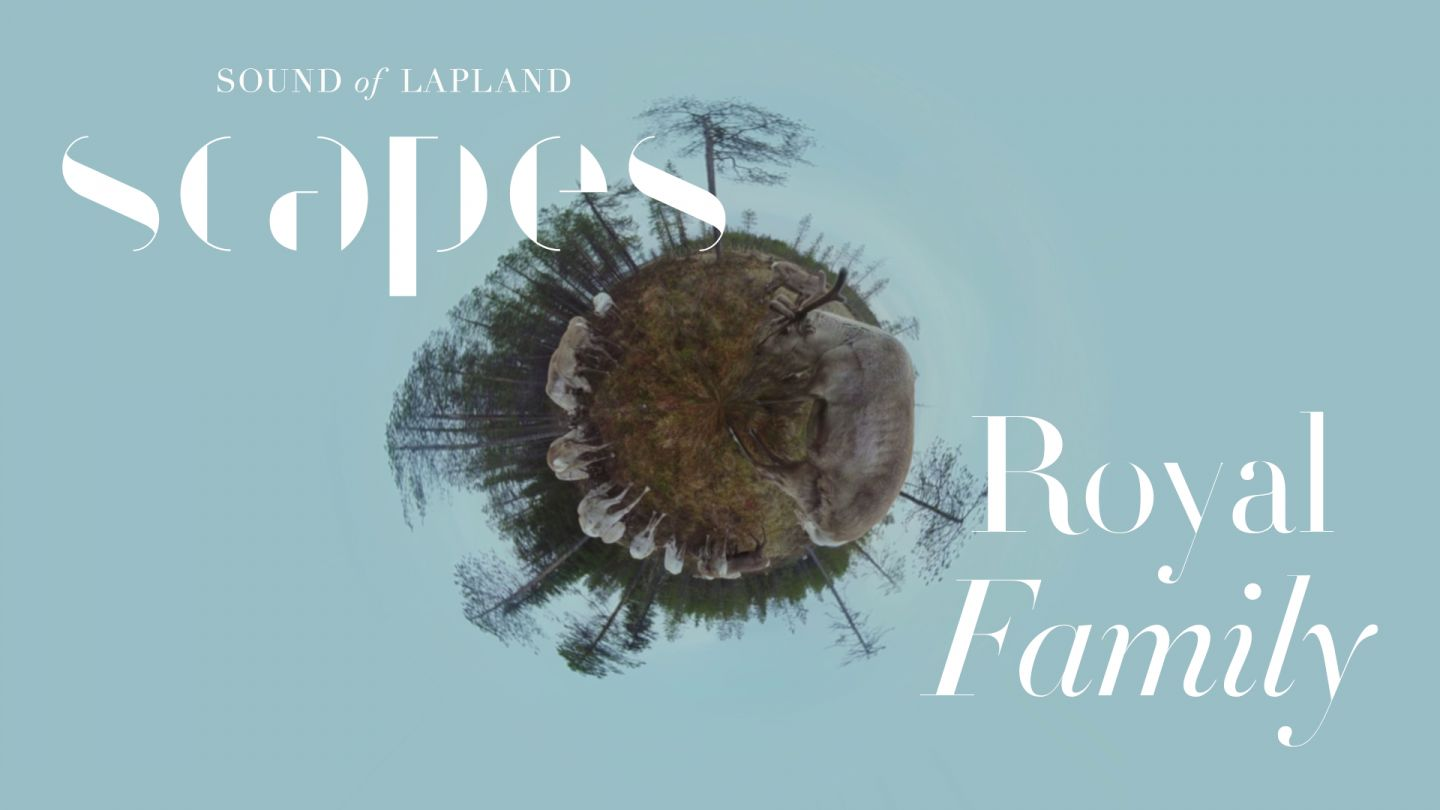 Royal Family, a 360 video, from SCAPES by Sound of Lapland