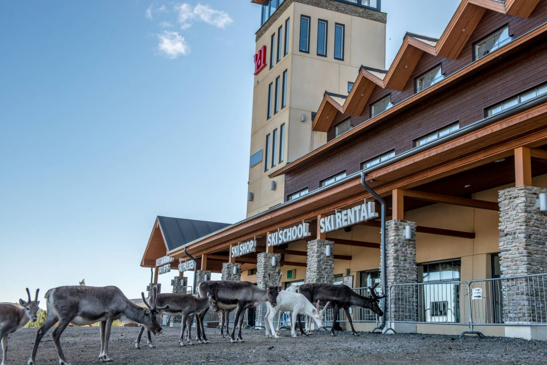 Ylläs Ski resort summer