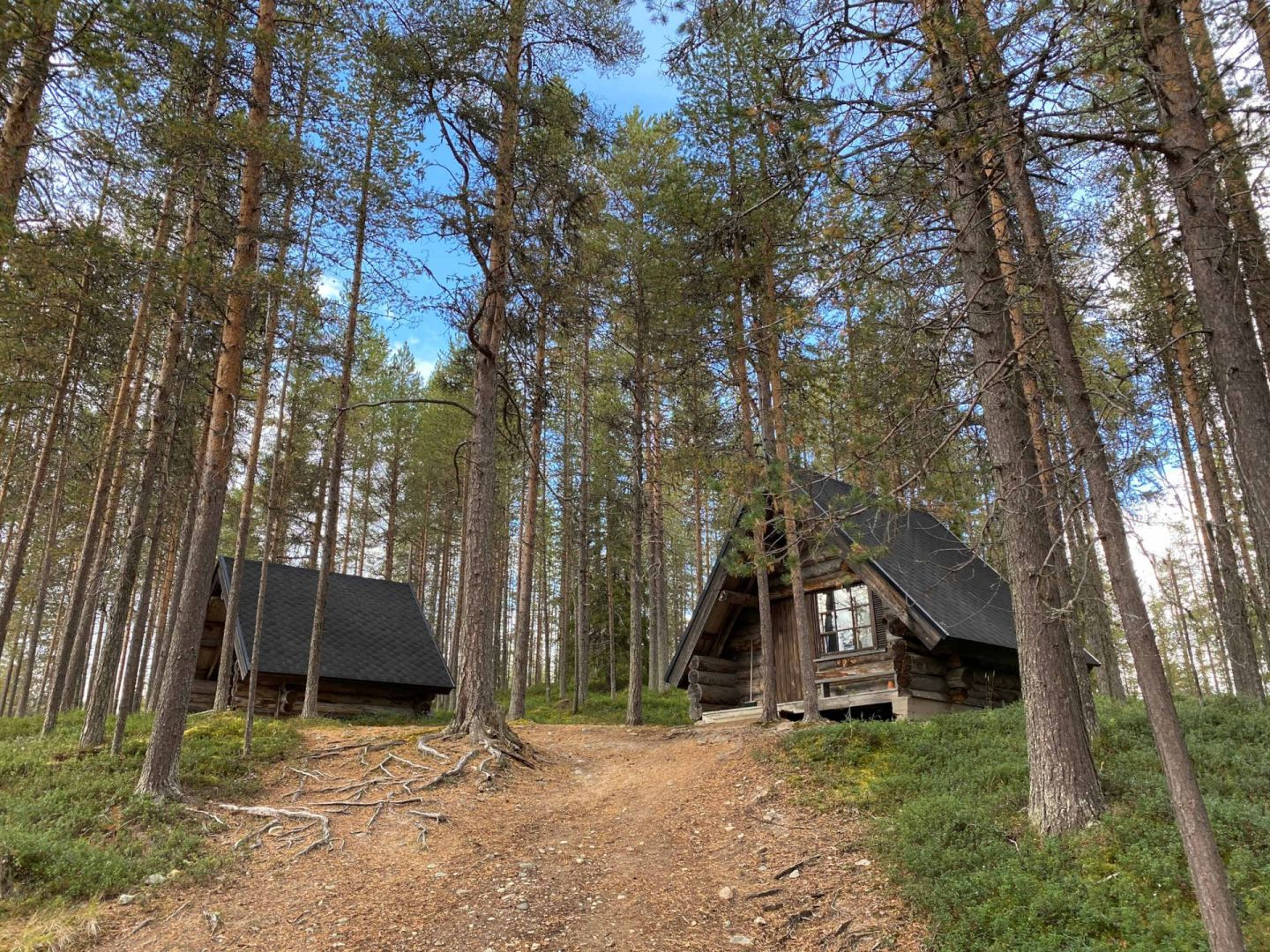 Cabins at Holiday Resort HImmerki in Posio, Finland