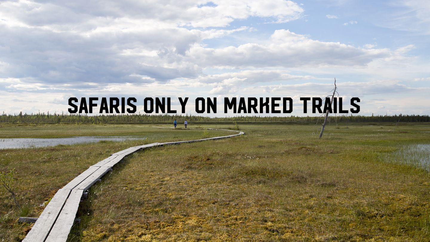Safaris on marked trails