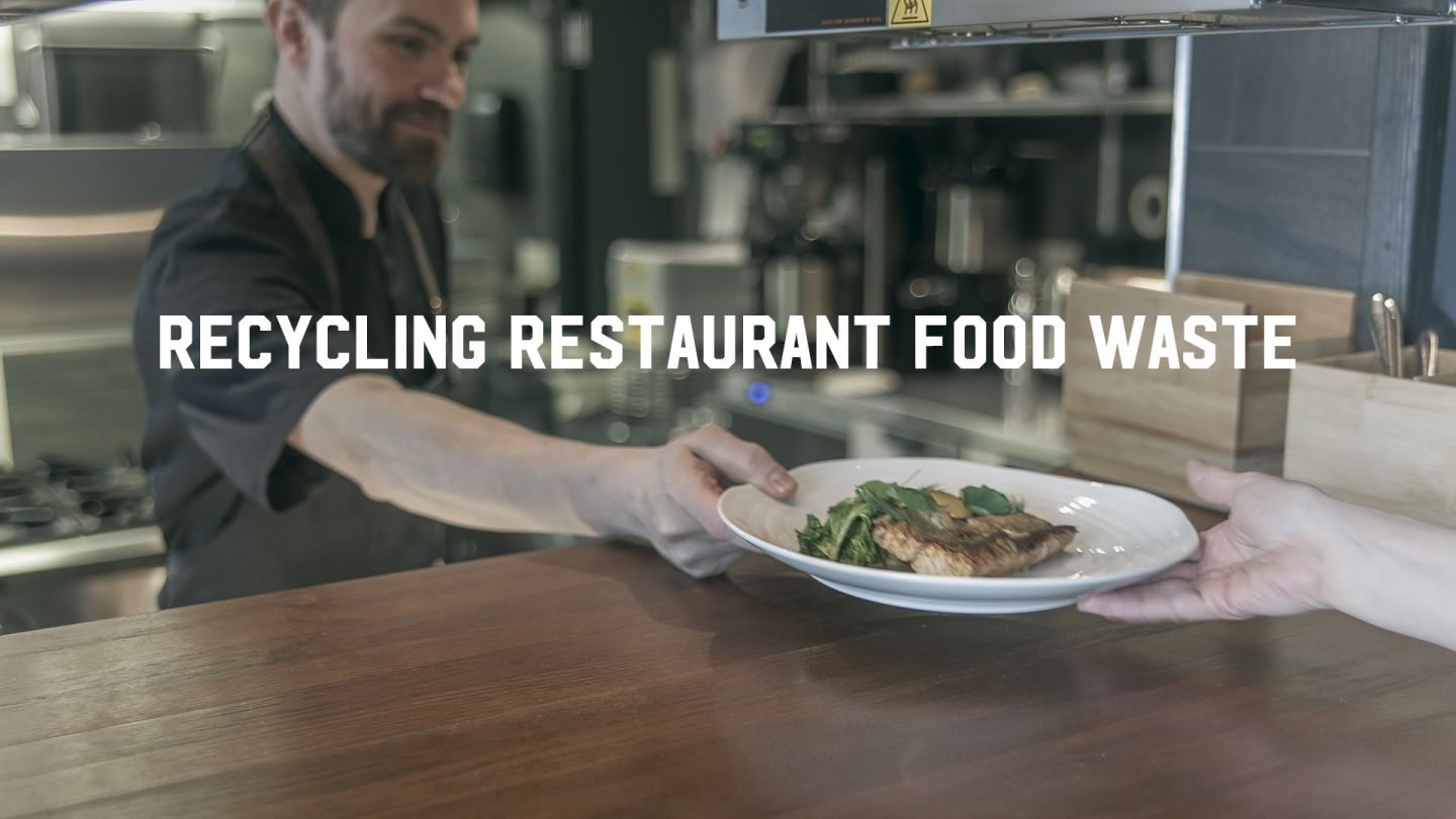 Restaurant food waste recycling
