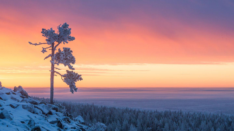 Winter sunset in Finnish Lapland