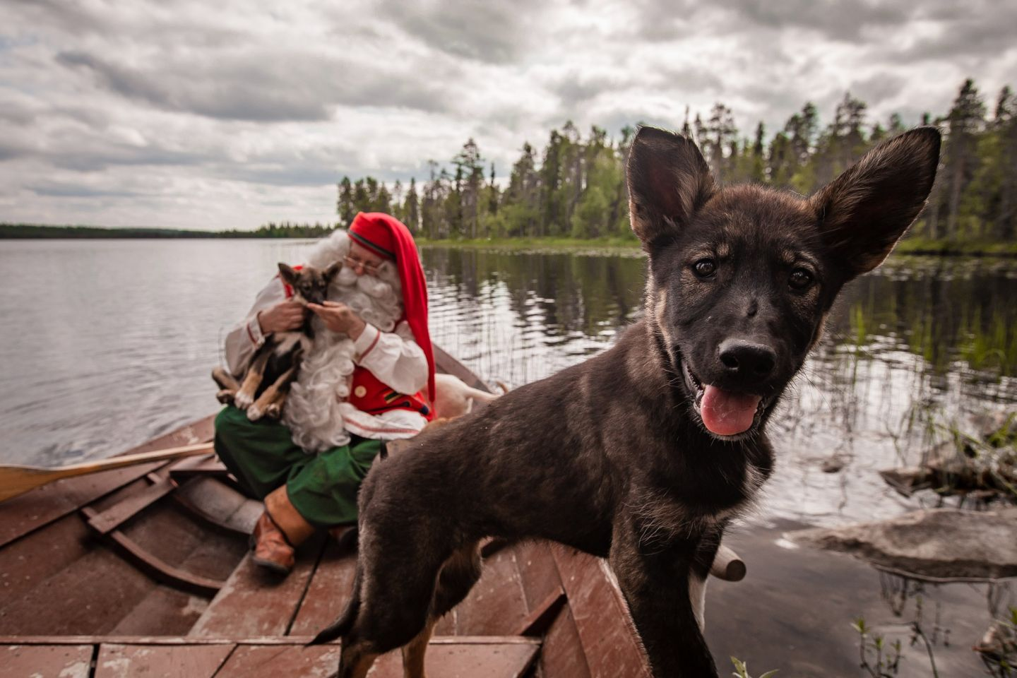 Santa Claus and huskies from Bearhill Husky in a rowboat in Rovaniemi, Finland