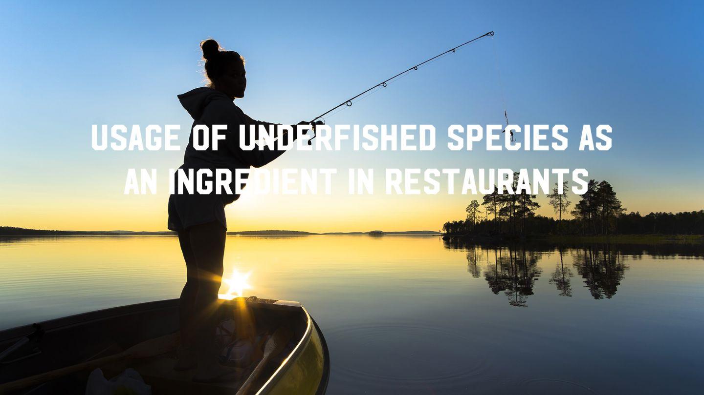 underfishing lapland