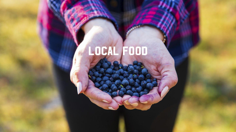 local food lapland
