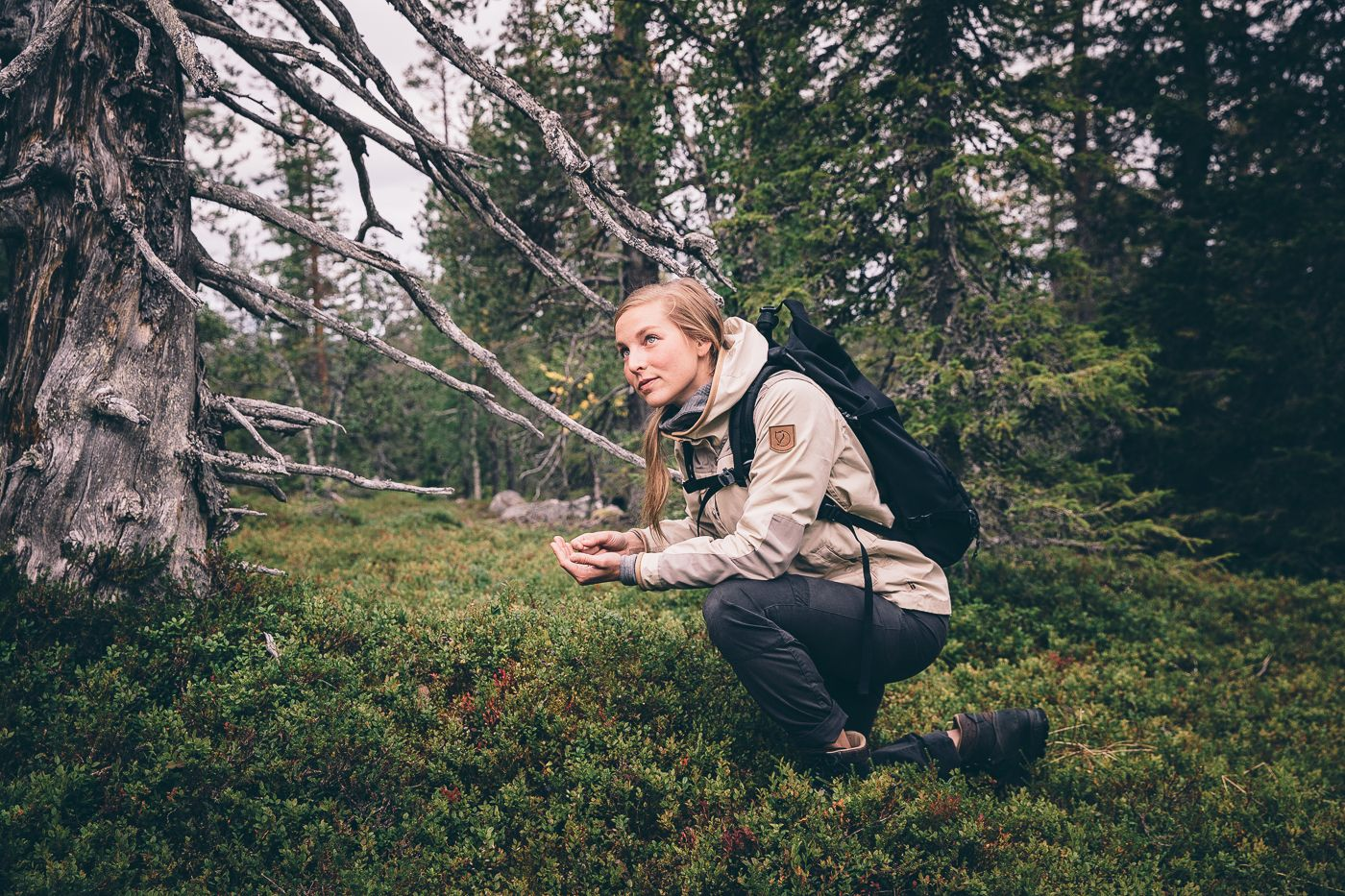 Hiking in Finnish Lapland