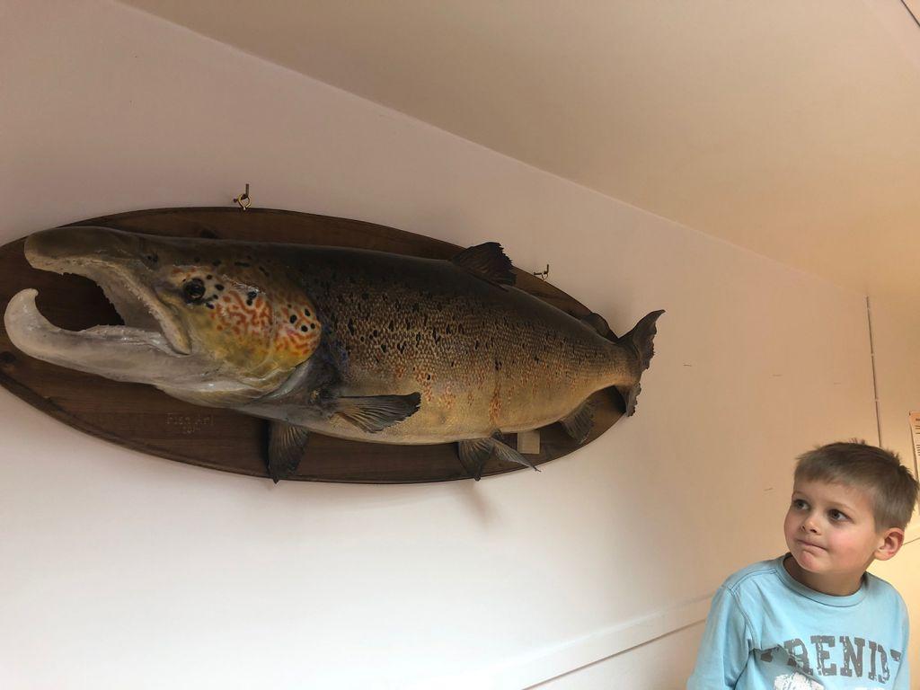 Karigasniemen koulun kalastuspäivä