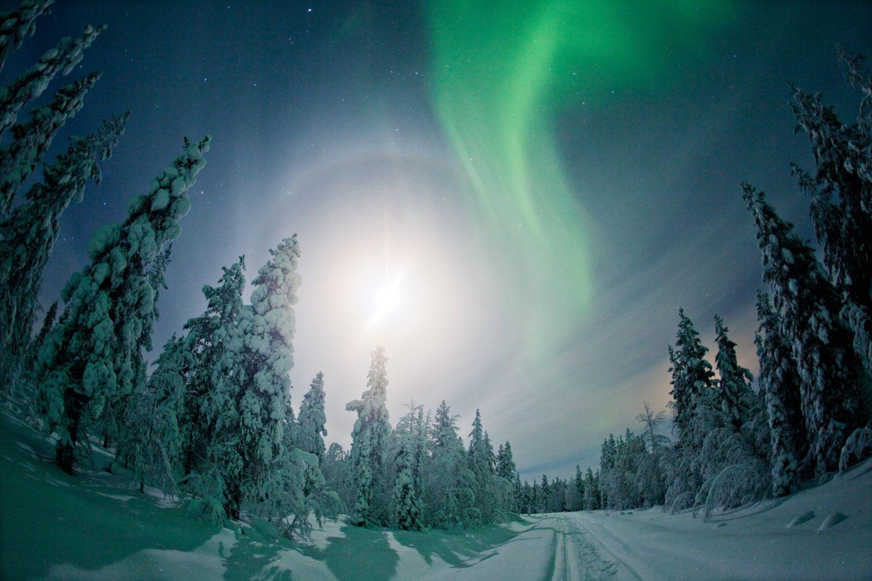 Auroras on a winter night in Finnish Lapland