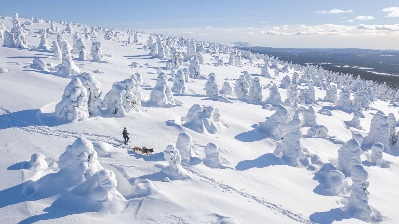 Winter day in Finnish Lapland