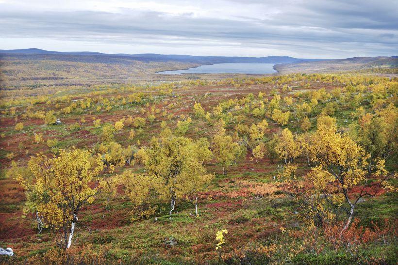 Nuorgam, Utsjoki, Lapland, Finland