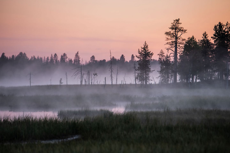 Härkäsuo in Ranua, Lapland, Finland