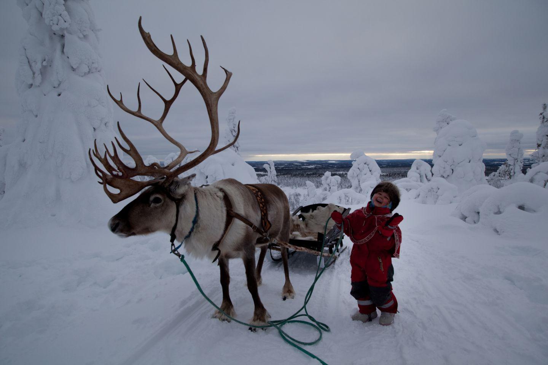 Christmas Bucket List: reindeer sledge ride in Salla