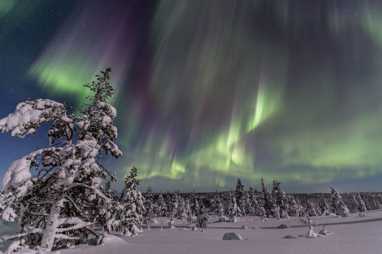 Christmas Bucket List: Northern Lights over Inari, Finland