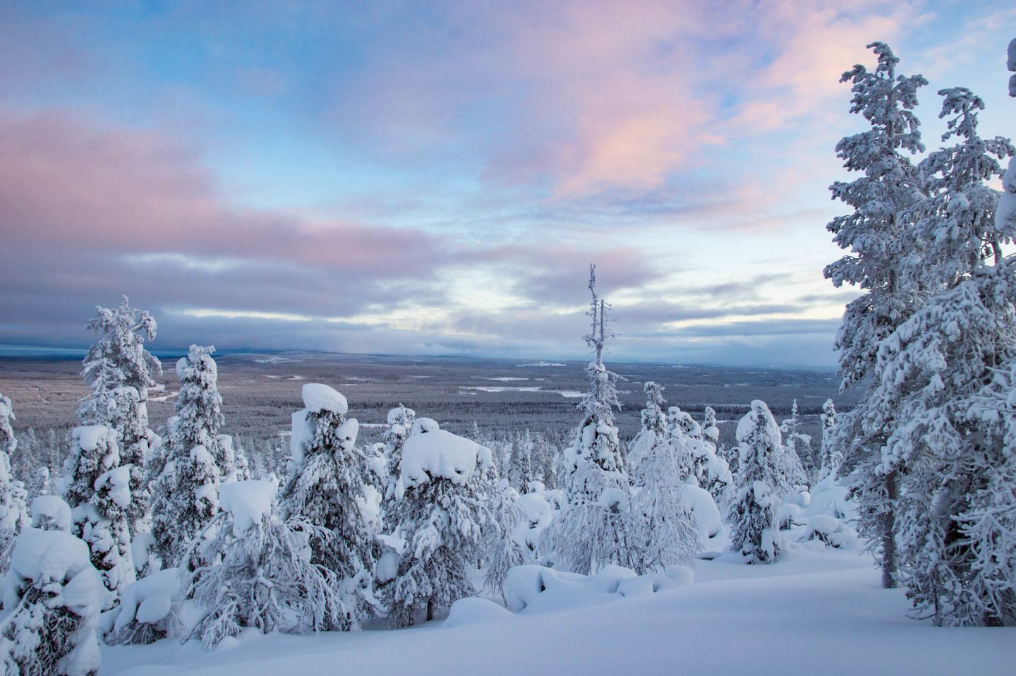 Christmas Bucket List: landscapes of northern Finland in winter