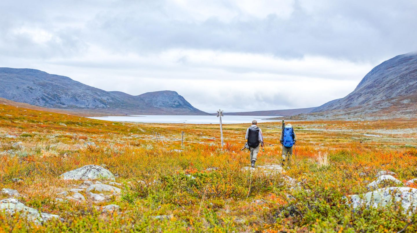 Autumn in the far north of Lapland, Europe's last wilderness