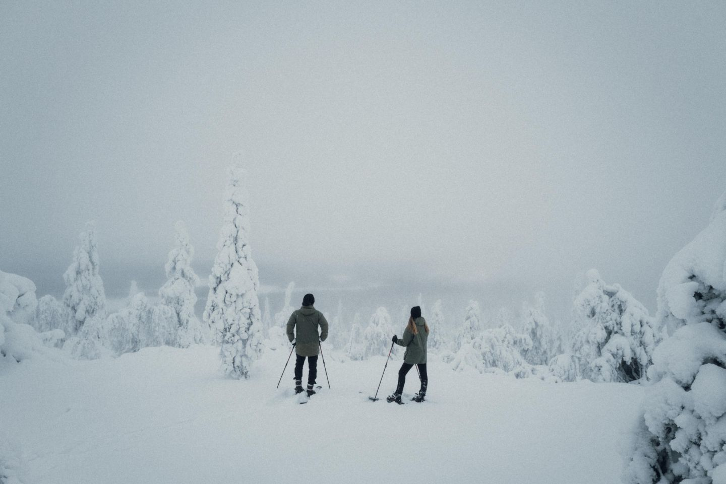 A snowy outing in Lapland, Europe's last wilderness