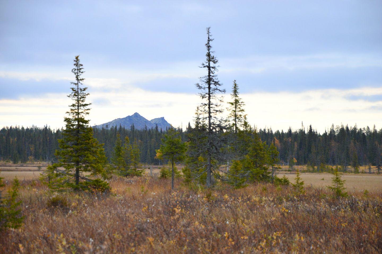 Mount Korvatunturi, in the Arctic wilderness of Savukoski, Finland
