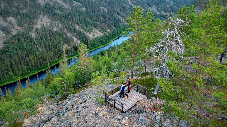 An overlook in the Arctic wilderness of Savukoski, Finland