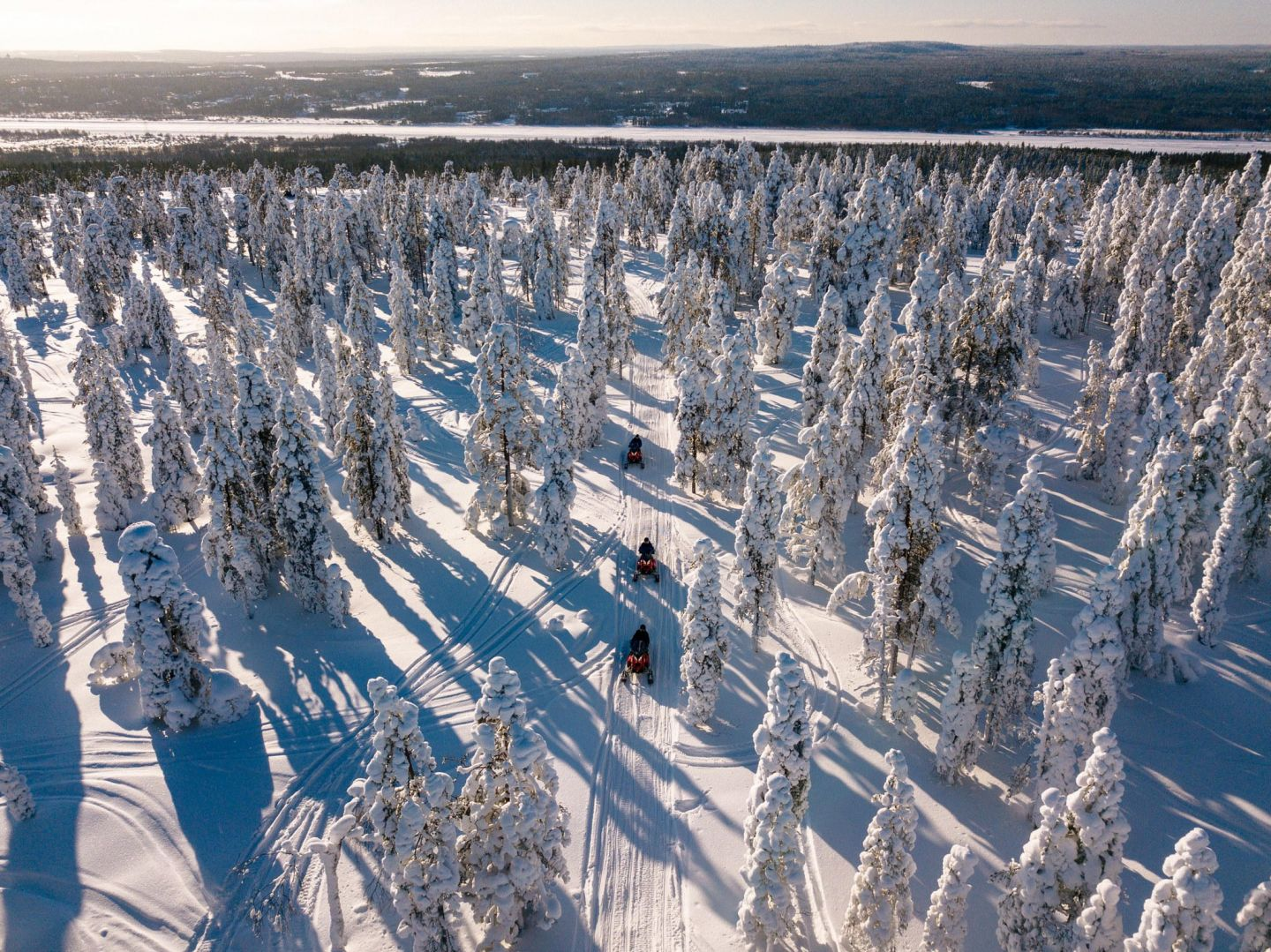 Cutting through the snowy forests in Lapland, Europe's last wilderness
