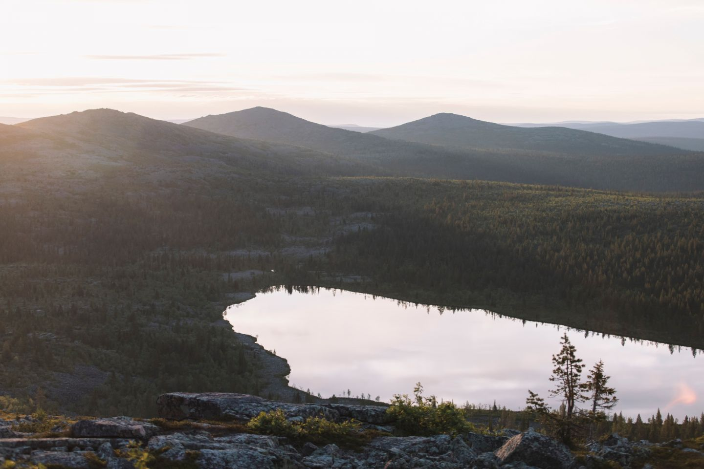 A crisp day in Lapland, Europe's last wilderness