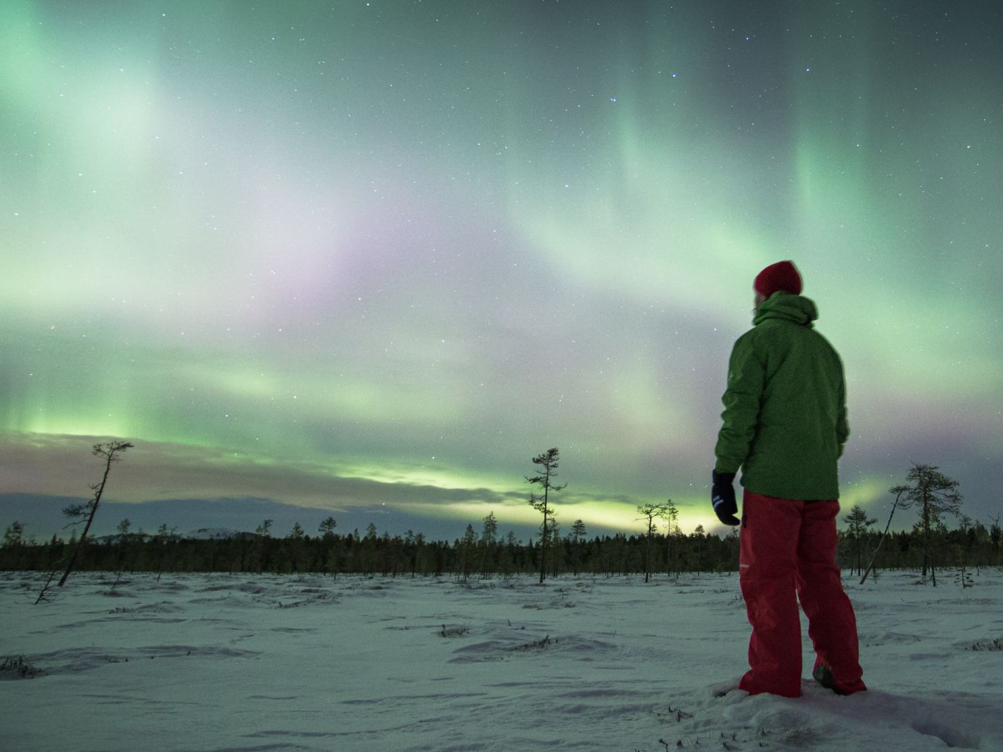 Watching the Northern Lights in Pyhä, in Lapland Finland