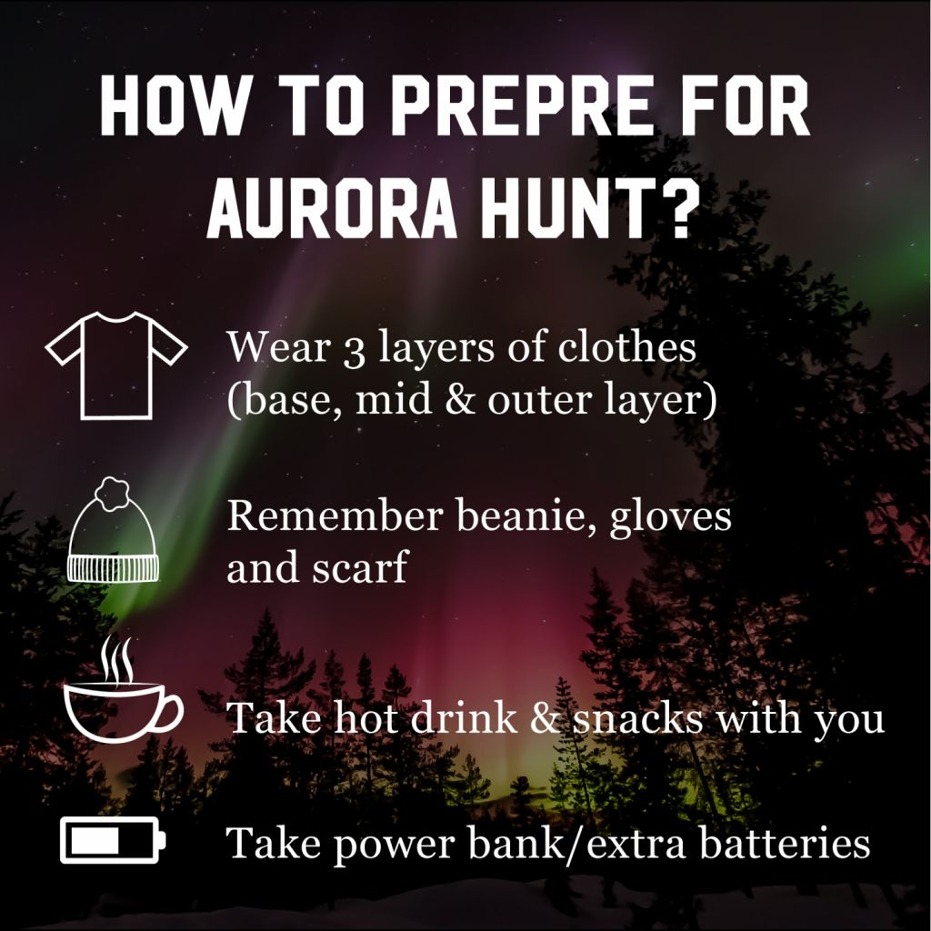How should you prepare for an aurora hunt?