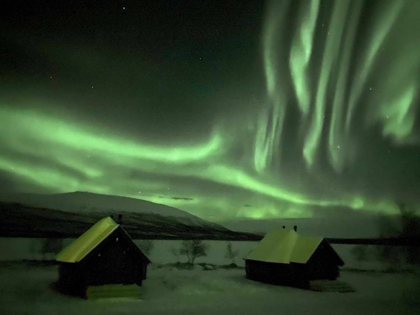 The auroras over cabins at Arctic Land Adventure, in Lapland, Finland