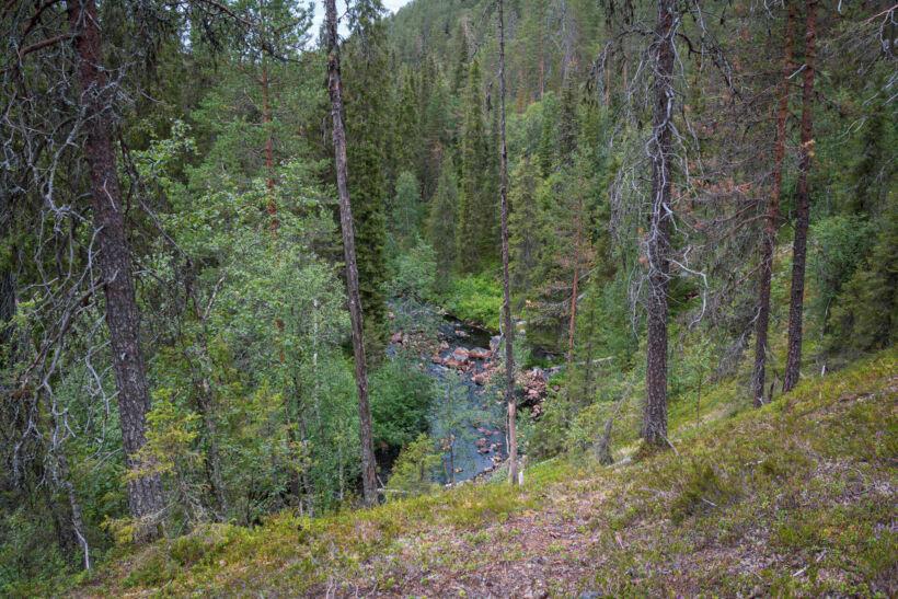 Salmijoki Ravine in Salla, Lapland, Finland