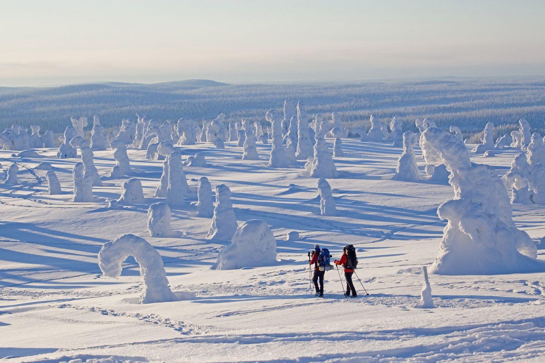 Riisitunturi National Park in Posio, Lapland, Finland