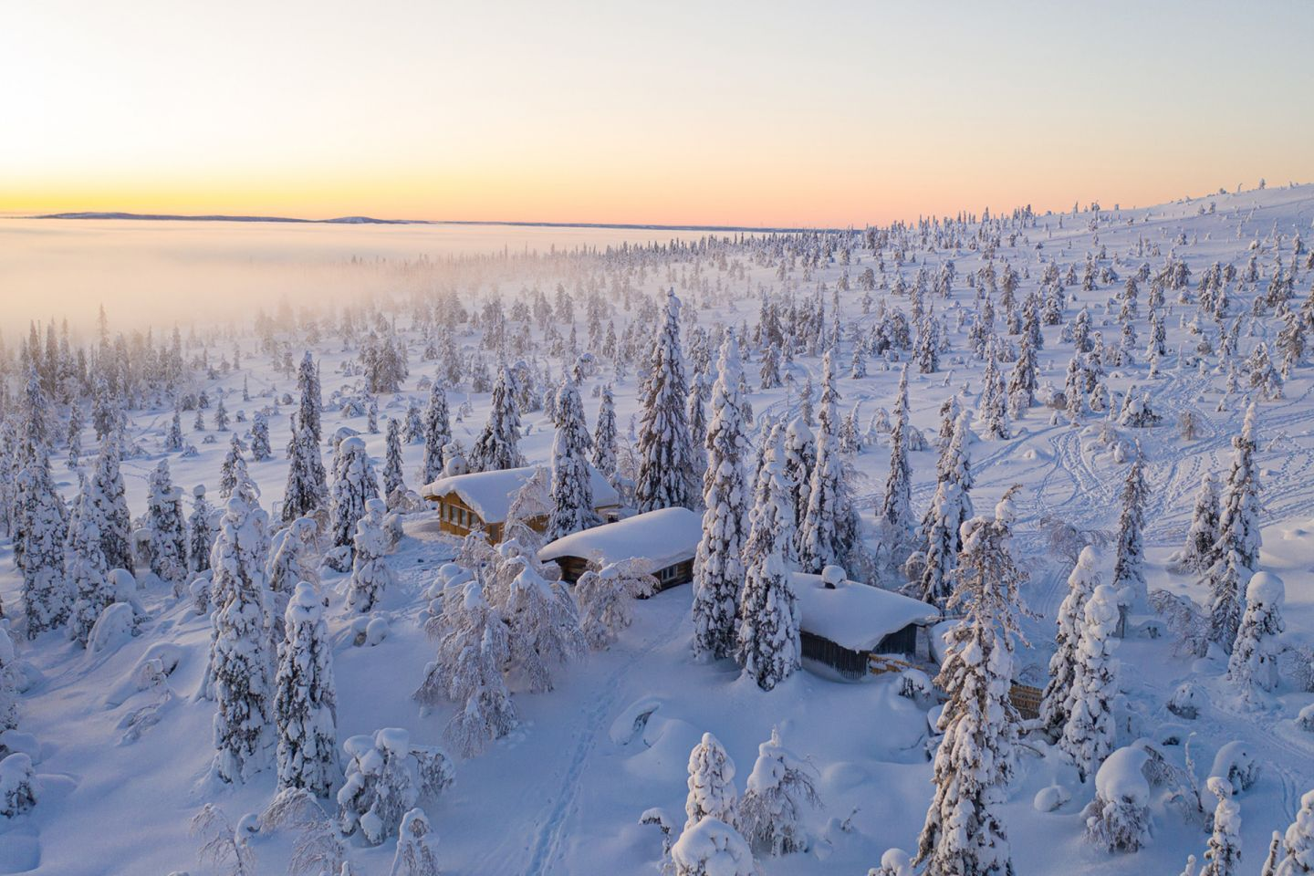 Crown snow-load in Riisitunturi National Park in Posio, Lapland, Finland