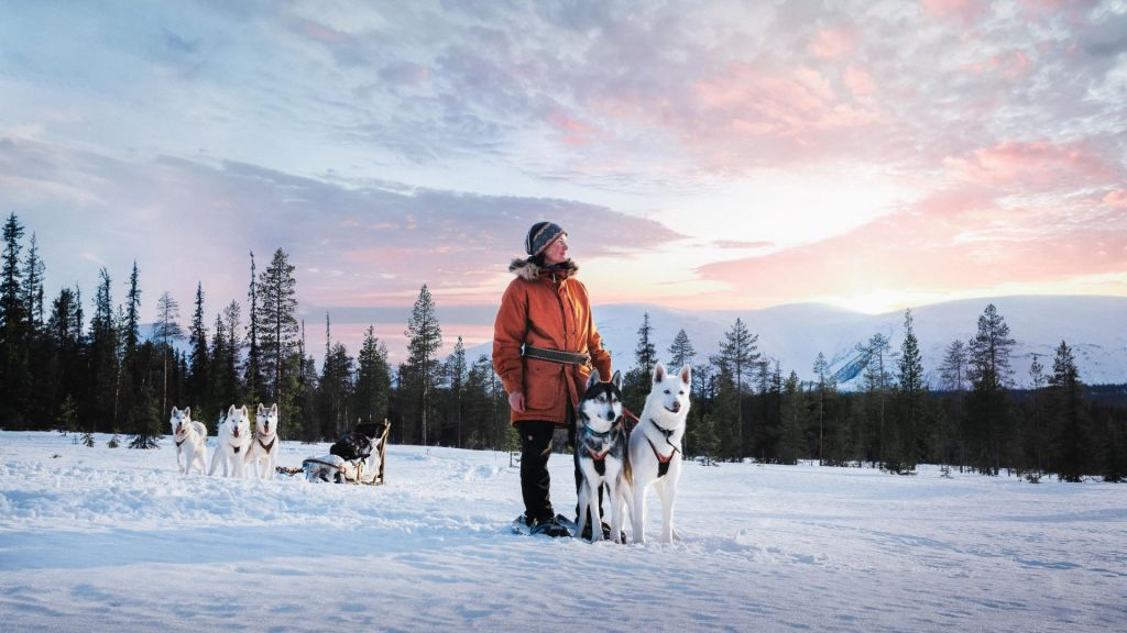 Courage and risk management are part of profitable and sustainable business in Lapland