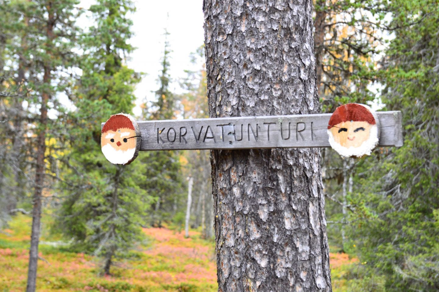 Hand-painted Santa Claus sign markers in Korvatunturi, Finland