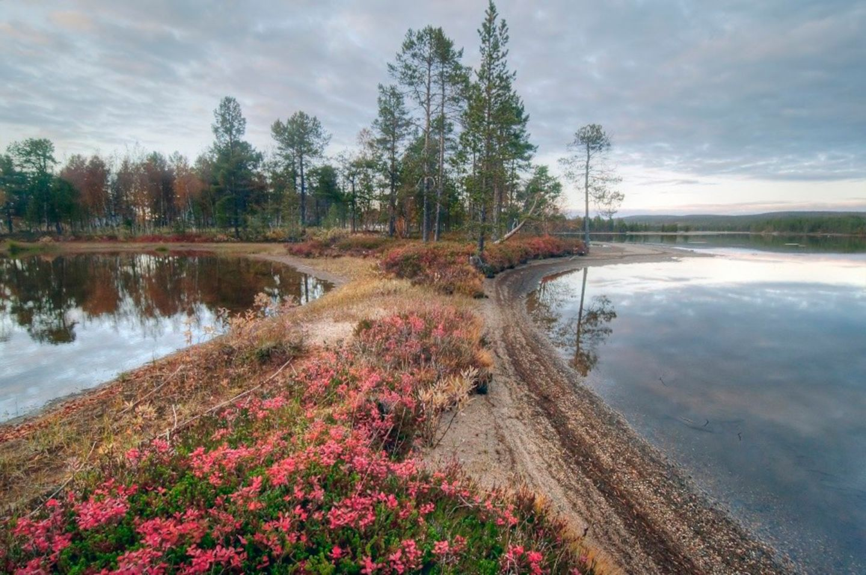 The beach in Inari-Saariselkä, Finland in autumn
