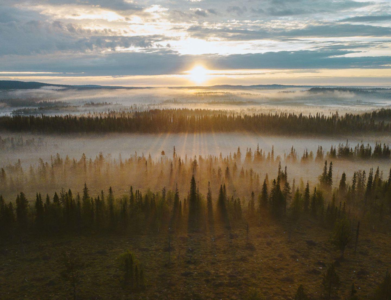 Midnight sun over Ruka-Kuusamo, Finland in summer