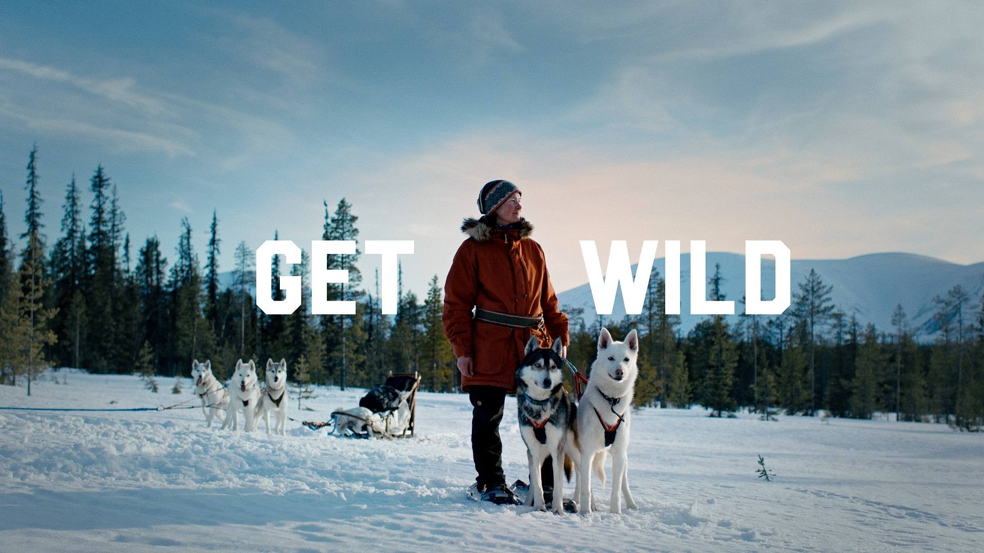 """A woman is standing and looking at the winter scenery with her husky dogs in Lapland. Background has a text """"Get Wild"""" in big lettering."""