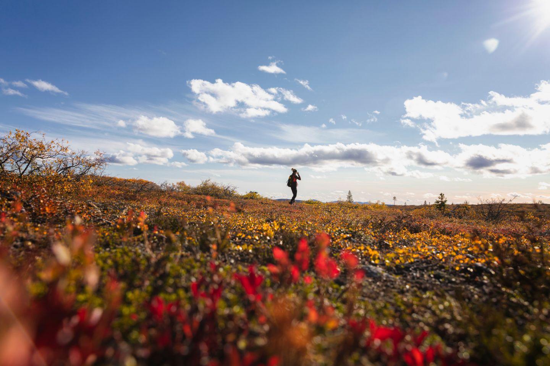 A slow travel autumn in Inari, Finland