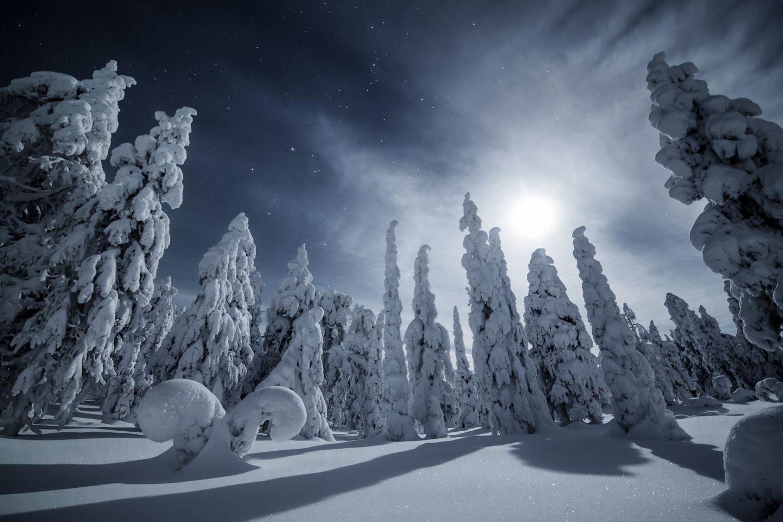Winter night, Palotunturi Fell in Posio, Lapland, Finland