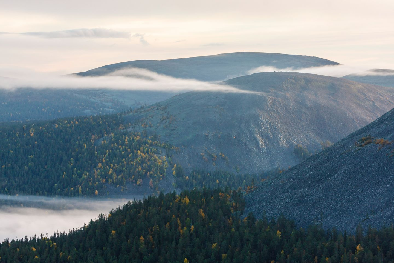 Misty fell in Lapland