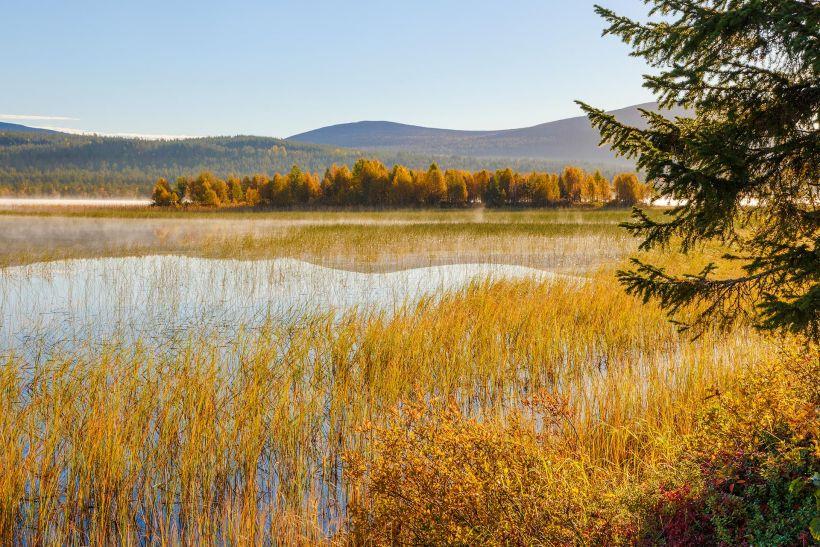 Fall color in Kolari