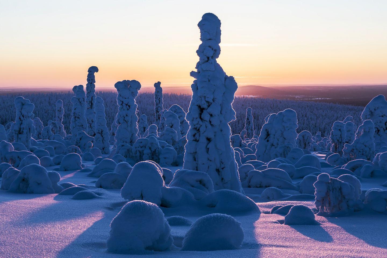 Winter at Härkätunturi Fell in Savukoski, Lapland, Finland