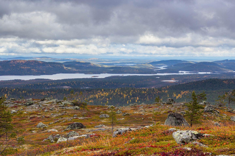 Autumn colors, Otsamotunturi Fell in Inari, Lapland, Finland